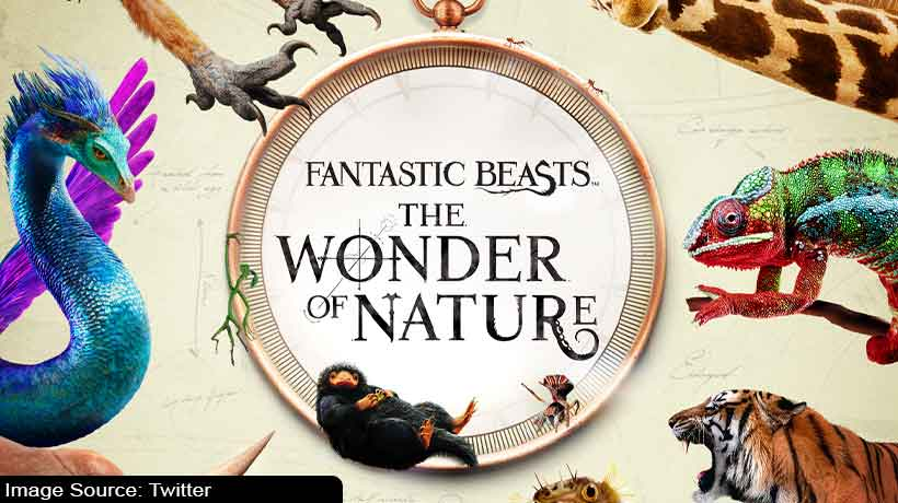 london's-natural-history-museum-to-open-exhibition-on-harry-potter