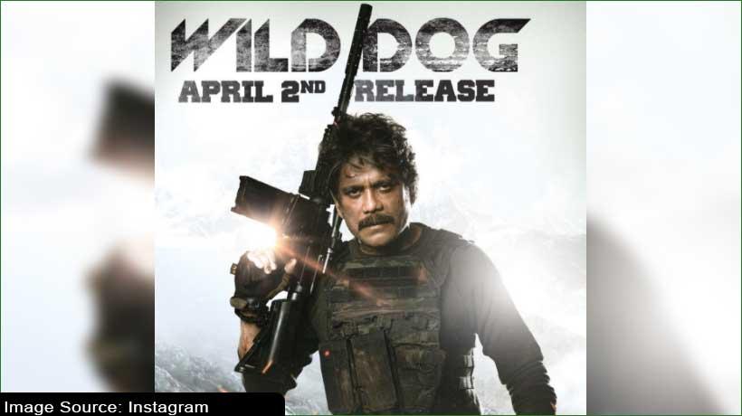 'wild-dog'