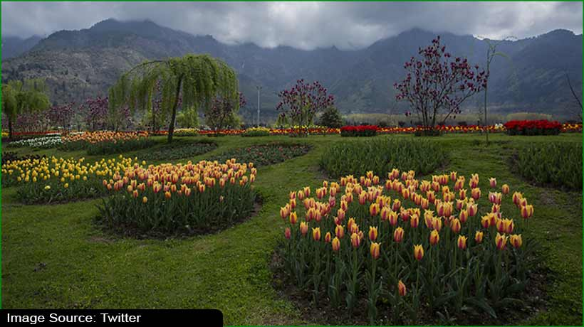 asia's-largest-tulip-garden-features-nearly-1.5-million-flowers-this-season