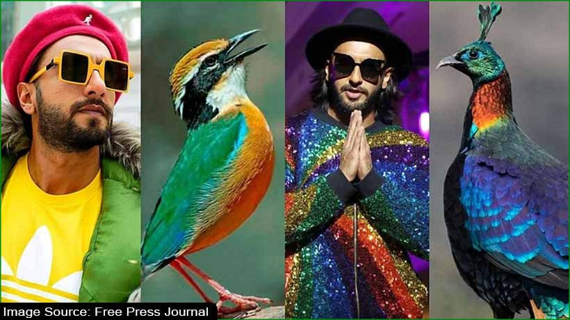 netizens-react-on-ranveer-singh's-colourful-attire-picture-goes-viral