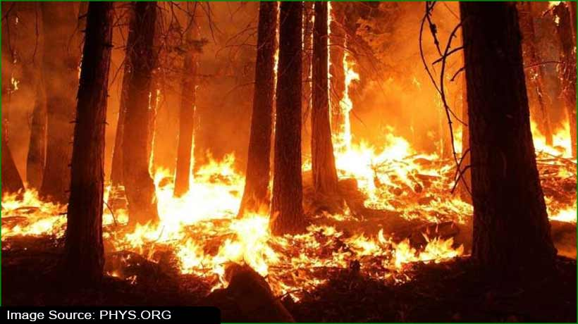 US researchers develop methods to know impact of destructive wildfires