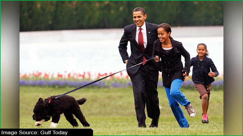 bo-barack-obama-and-white-house's-beloved-dog-dies-of-cancer