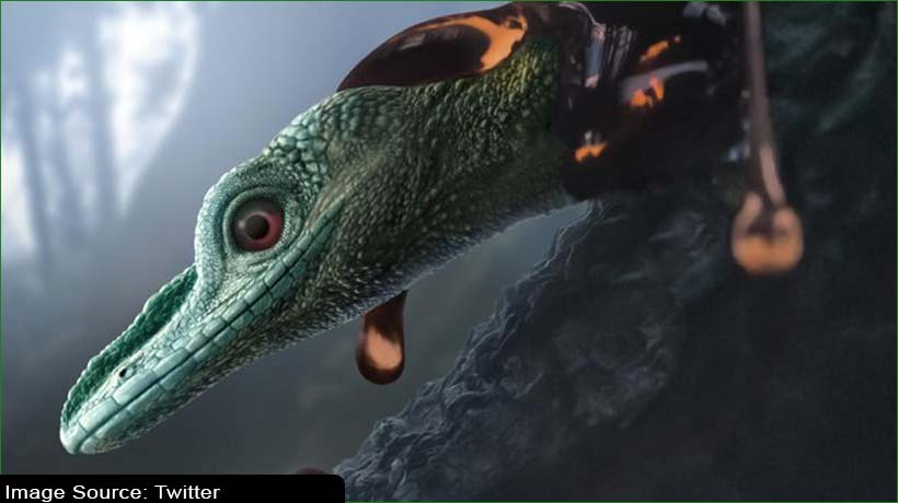 'world's-tiniest-dinosaur'-turns-out-to-be-'prehistoric-lizard'