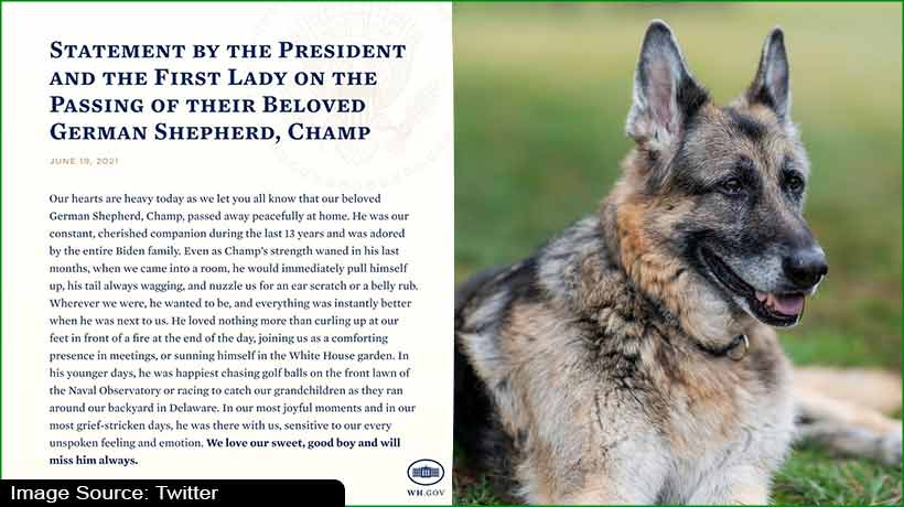 joe-and-jill-biden's-older-dog-champ-dies