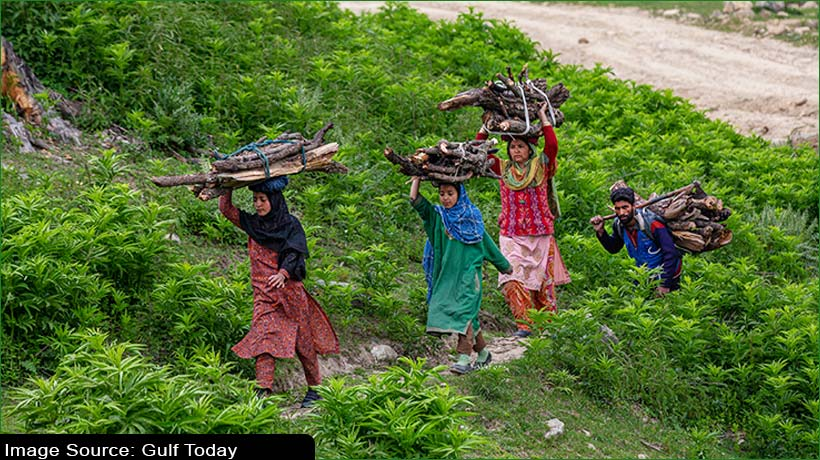 kashmir-tourism-witnessing-steady-rebound
