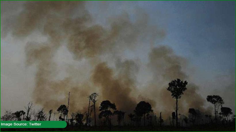brazilian-amazon-reaches-new-record-of-deforestation