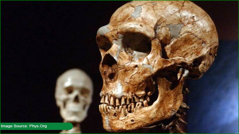 study-reveals-that-7percent-of-our-dna-is-unique-to-modern-humans