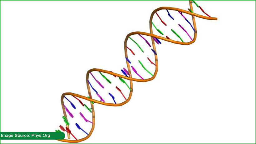 dna-based-data-structure-systems-might-be-possible