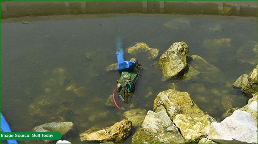 two-asian-men-electrocuted-to-death-during-fish-pond-maintenance