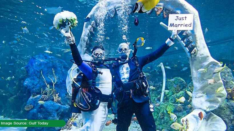 couple-get-married-underwater-fish-and-reef-sharks-attend-ceremony