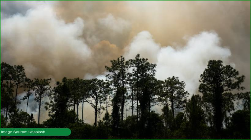 least-september-fires-recorded-in-amazon-in-two-decades