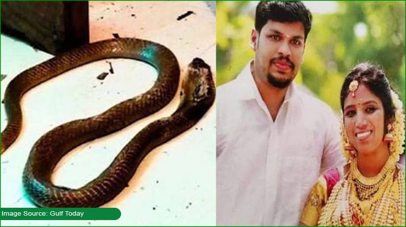 husband-handed-double-life-sentence-after-killing-wife-using-cobra