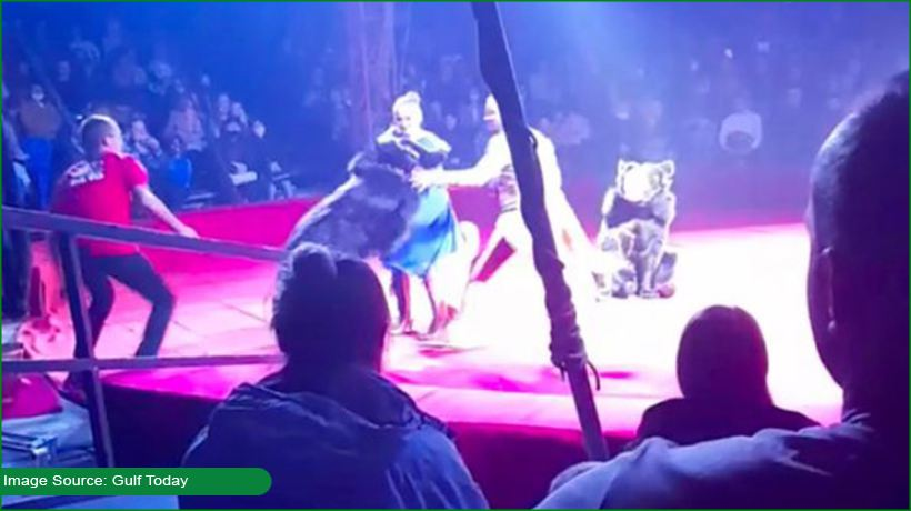 pregnant-woman-attacked-by-bear-at-russian-circus